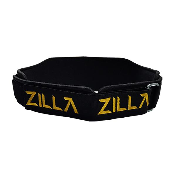 2004 Lifting Belt